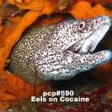 PCP#590... Eels on Cocaine....