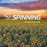 Summer Dream Ride Spinning®