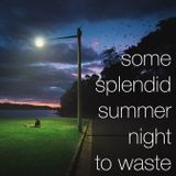 some splendid summer night to waste