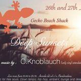 Gecko Sun-set 8-2017 Pt.1