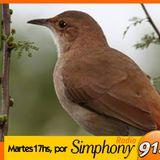 Voces 2014 - Fragmento del programa El Hornero por Simphony del 30-12-2014