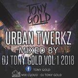 Urban Twerkz Vol.1 mixed by Dj Tony Gold.