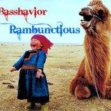 Basshavior - Rambunctious