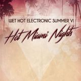 (Jazzy Hip Hop / Inst. / Lounge) Live @ Wet Hot Electronic Summer - Hot Miami Nights, July 2016