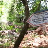 Ep. 01 - The Path To Skandashram Cave at Ramana Maharshi Ashram