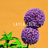 Layla Cold - Lounge Pop Mix Vol.1