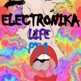 ELECTRONIKA LIFE 2014 Set Part1-RAGHAV RATHORE