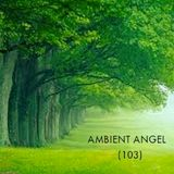 Ambient-Angel (103)