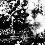 Herr Bert - DYNAMIXX TECHNO #20 - 25.01.2014