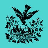 the--dream--machine - Ornithology