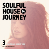 Soulful House Journey Vol. 14/3