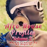 DJ Angel B! Presents: Afro-House Profiles (Volume 2)