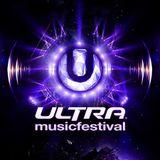 Steve Aoki - Live @ Ultra Music Festival 2013 UMF (Miami) 24.03.2013
