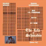 Radio Schmadio Nr.40 - The Life of Schmadio