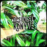 Gumilap @ Dzsungel Konyve - Tilos Radio - 20170404