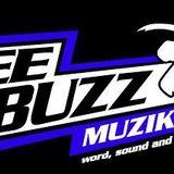 Deebuzz Sound Mix @ Rastafire Radio Show @ Meo Reggae Box