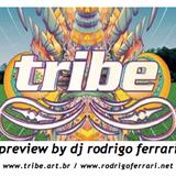 Rodrigo Ferrari, Tribe 2012 Preview.