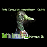 Matin Brumeux.... #3... Canards dans la brume...  sur Radio Campus Lille