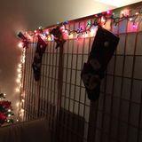House of Christmas 2