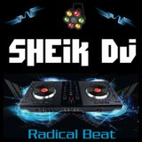 RADICAL BEAT Nov.17 By SheikDj