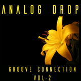 Analog Drop Groove Connection Vol 2