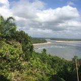 Sounds from nature from Boipeba, Bahia - Brazil.  Day Time