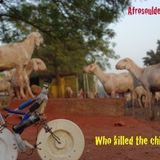Afrosouldescarga n°3 - Who killed the chicken?