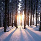 Soulful Winter Warmer mix