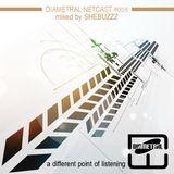 Diametral Netcast #005 mixed by Shebuzzz