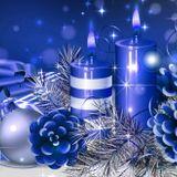 Martin Garrix - Animal Christmas