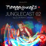 Raggajungle.biz Junglecast 02 - DJ K