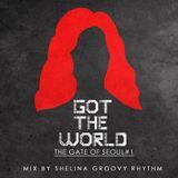 Shelina-Got-The-World-Electro-Mix