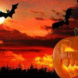 Magic Sunset 074 (Crazy Pumpkin)