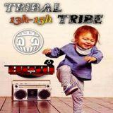 {Emission TribalTribe 26.01.17 - 13h00-15h00}