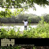Wild City #133 - sparkle & fade