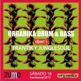 Dj Frantik Presenta Organika Sessions Vol I