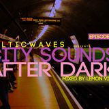 BalticWaves presents City Sounds After Dark 002 mixed by Lemon Vibes