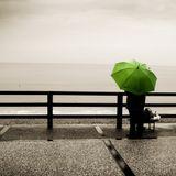Keven Yard-Rainy Days