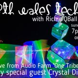 North Wales Techno *Live* from Audio Farm One Tribe festival with Crystal Distortion, TGR & Richie Q