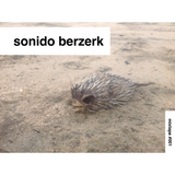 "Sonido Berzerk  #001""WEIRDO WAVES"""