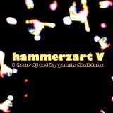 hammerzart V - djset by yamin denktanz