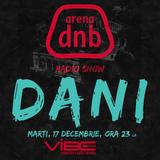 Arena dnb radio show - vibe fm - mixed by DANI - 17 dec 2013