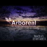 Arboreal Presents: Palm Oil #35 - Distant Shores 10