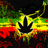 Selexyonne 35  (spécial reggae-ragga-dancehall)