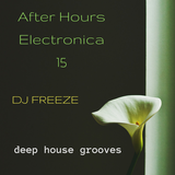 After Hours Electronica 15 \\ mixed by Freeze