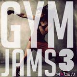 Gym Jams Vol. 3 [Explicit]