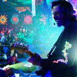 PJ Wassermann's ChillyTrippyDippy live at Summer Never Ends Festival 2015 (excerpt)