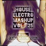 Yankee's House & Electro MashUp #25 (2013)