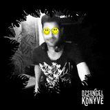 DJ Ren + Pozor at Dzsungel Konyve 2018.02.20.