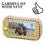 GARSHVA #15 WITH YFYF